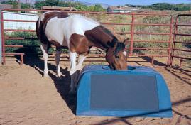 Suntanks Freeze Proof Solar Heated Horse Waterers Cow